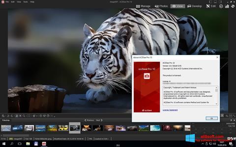 截图 ACDSee Pro Windows 8