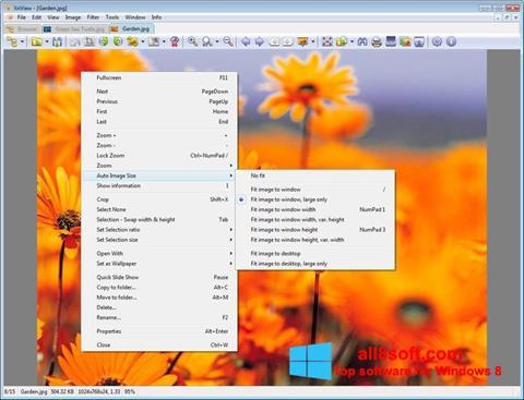 截图 XnView Windows 8