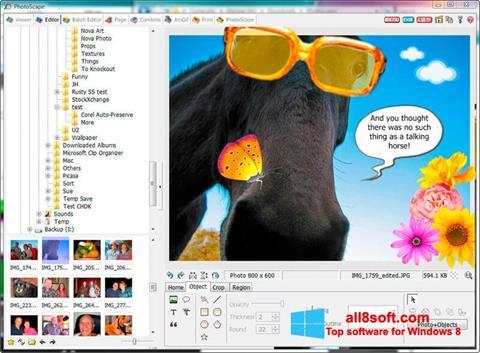 截图 PhotoScape Windows 8