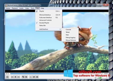 截图 VLC Media Player Windows 8